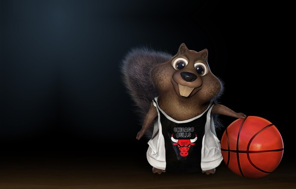 Picture the ball, basketball, Chicago Bulls, Chicago Bulls, children's, darlon ximenes, Squirrel playing basketball!