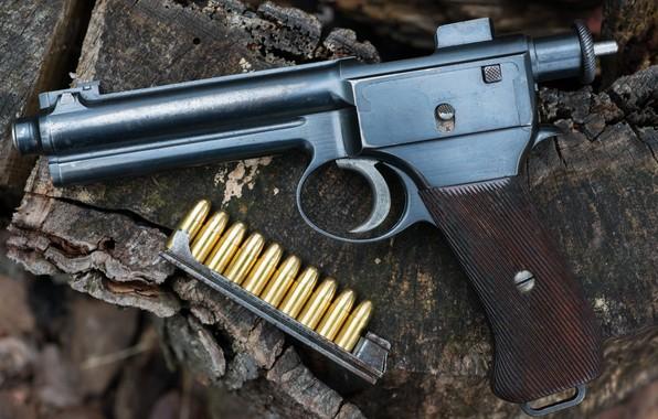 Picture gun, cartridges, 1907, Roth Steyr