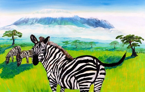 Picture landscape, animal, mountain, picture, Zebra, Africa, Kilimanjaro