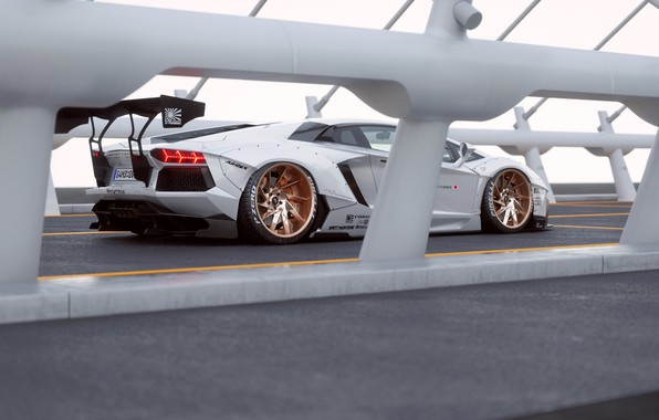 Picture Lamborghini, White, Aventador, Rear, Liberty, Walk