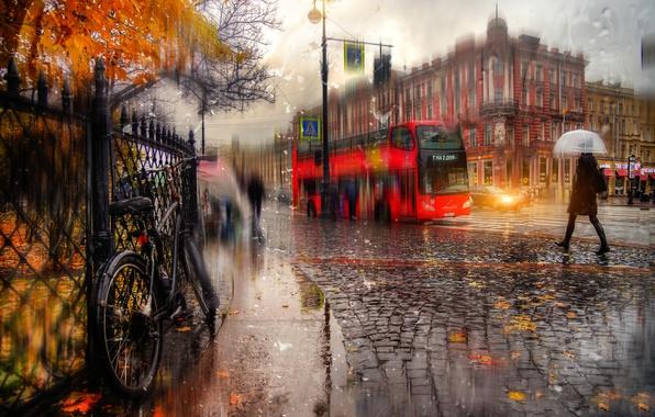 Picture girl, rain, umbrella, Autumn, Peter, Russia, Saint Petersburg, Catherine's garden