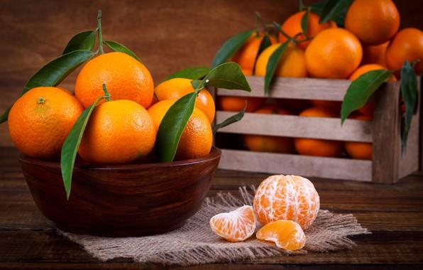 Picture leaves, citrus, bowl, slices, Mandarin, mandarins