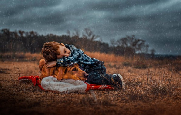 Picture rain, dog, boy, friendship, friends