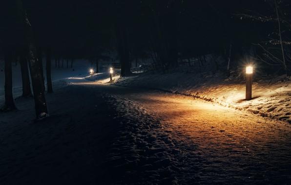 Picture snow, night, Park