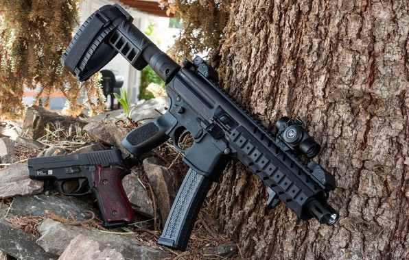 Picture gun, weapons, gun, weapon, SIG, P226, SMG, submachine gun, MPX, П226, gun machine gun, WHITEFISH