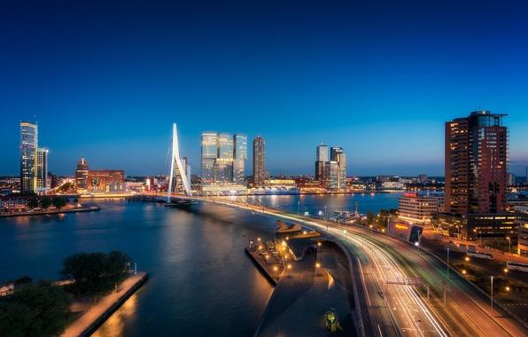 Picture bridge, lights, river, Netherlands, night city, skyline, Holland, Rotterdam, Rotterdam