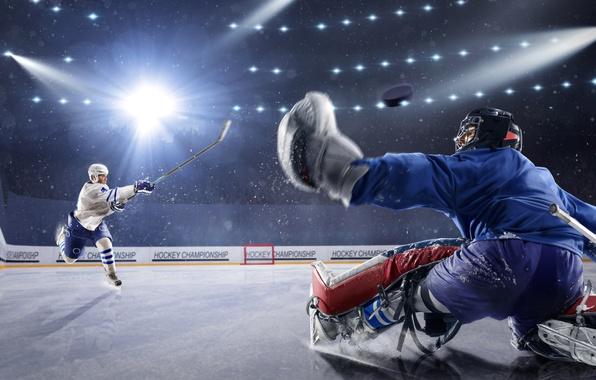 Picture Sport, Uniform, Men, Hockey, Rink