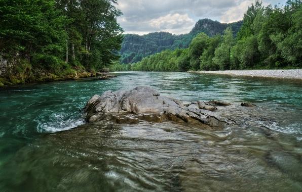Picture Trees, River, Austria, Stones, Nature, Austria, River, Trees
