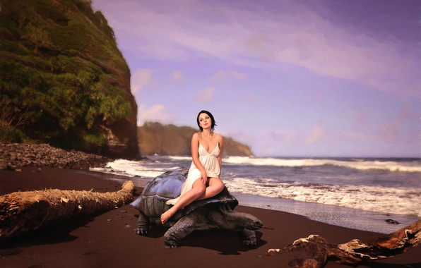 Picture girl, shore, turtle, surf