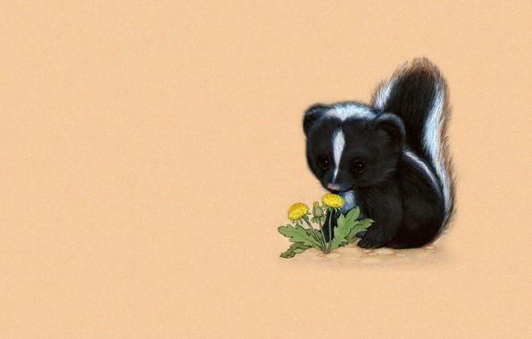Photo wallpaper pussy, baby, children's, art, skunk