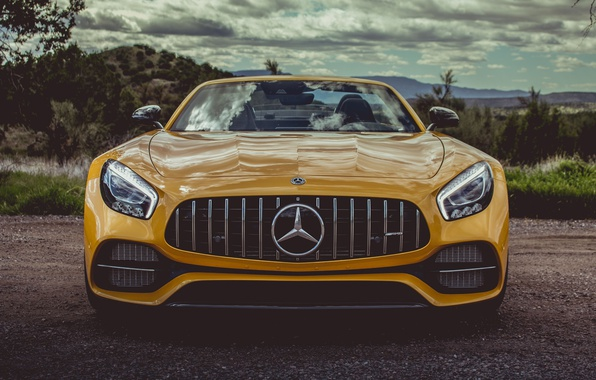Picture car, Roadster, Mercedes, logo, yellow, Mercedes Amg, Mercedes Amg Gt Roadster, Mercedes Amg Gt