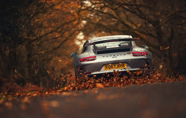 Picture road, leaves, 911, Porsche, Porsche, GT3