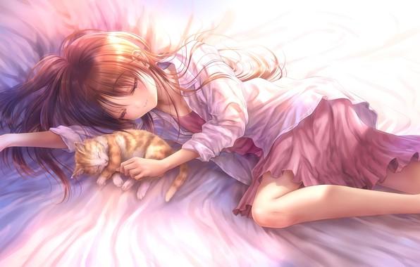 Picture cat, cat, anime, art, sleeping, girl