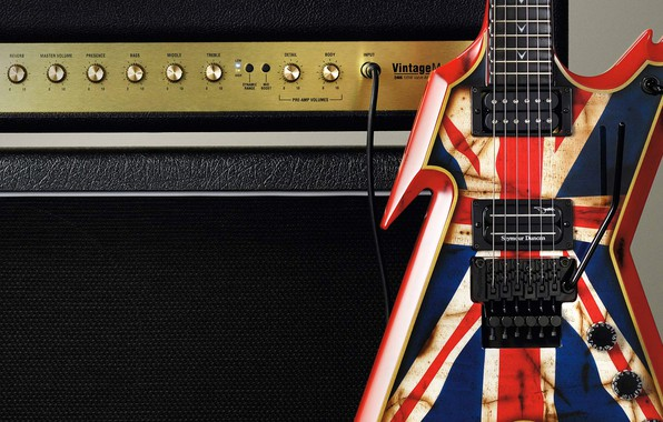 Picture concert, tool, amplifier, electric guitar