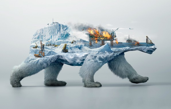 Picture fire, collage, polar bear, Burov tower
