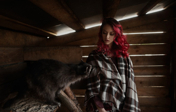 Picture girl, face, model, portrait, the barn, raccoon, freckles, light, red, the beauty, Cape, painted, beauty, …