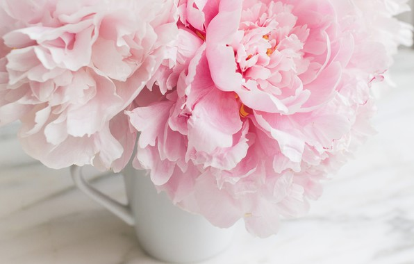 Wallpaper Flowers Bouquet Marble Pink Flowers Peonies