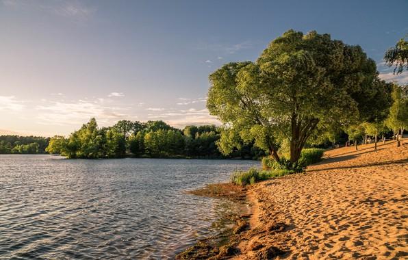 Picture summer, landscape, nature, lake, beauty