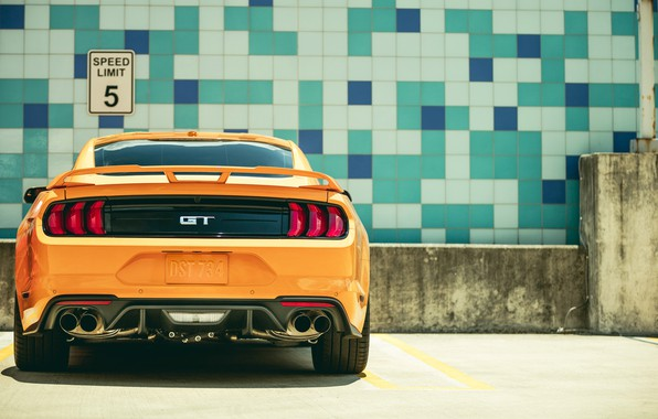 Picture Ford, rear view, 2018, Mustang GT, Fastback Sports