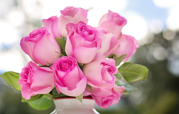 Picture flowers, roses, bouquet, vase, buds