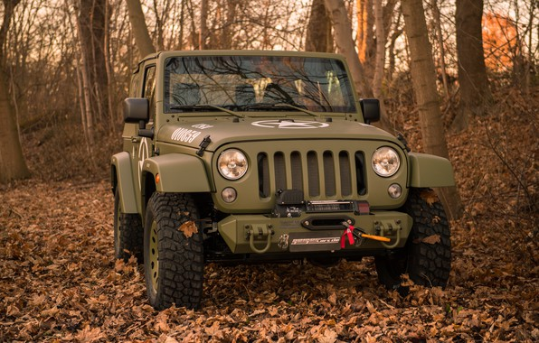 Picture autumn, forest, trees, foliage, bumper, 4x4, Jeep, winch, the soft top, Geiger-Willys Limited Edition