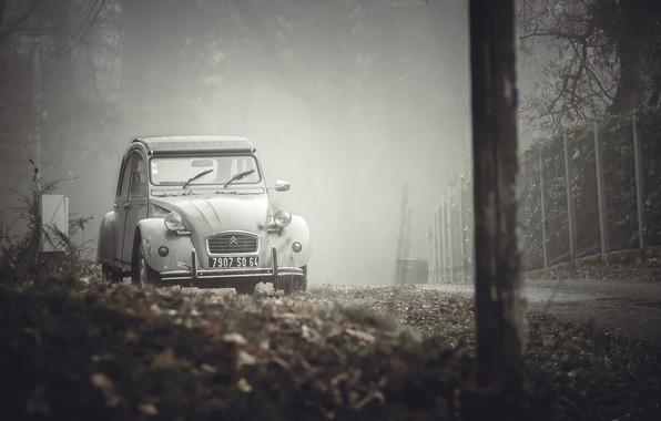 Picture machine, fog, street