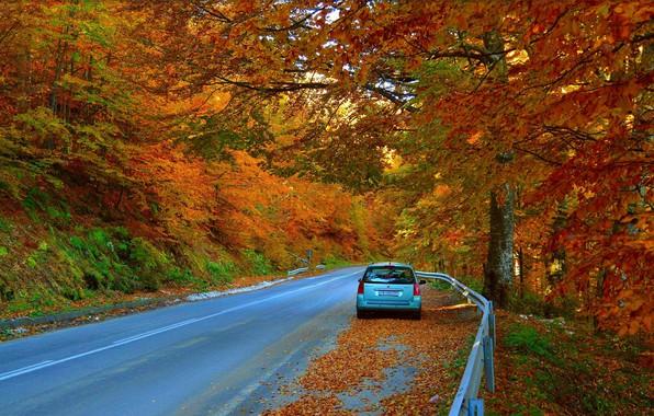 Picture Road, Autumn, Machine, Car, Fall, Foliage, Car, Autumn, Colors, Road, Leaves