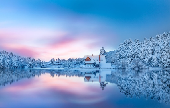 Picture winter, forest, snow, lake, house