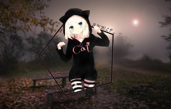 Picture girl, fog, spring, anime, shop, neko, cat, madskillz