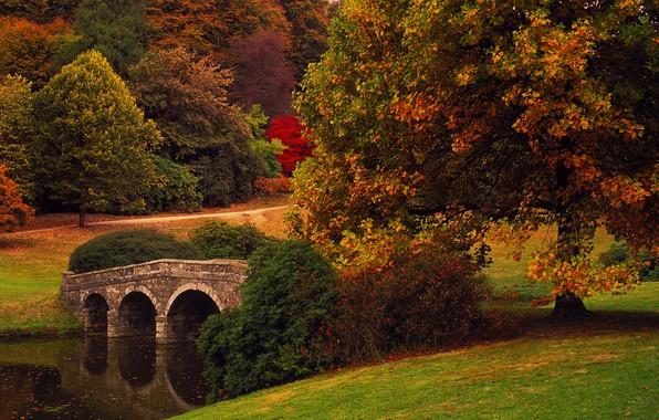 Picture autumn, trees, bridge, Park, England, Wiltshire