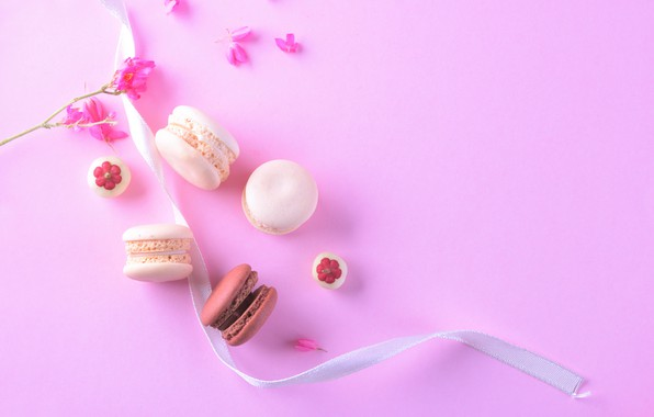 Picture flowers, petals, colorful, dessert, pink, flowers, cakes, sweet, sweet, dessert, macaroon, french, macaron, macaroon