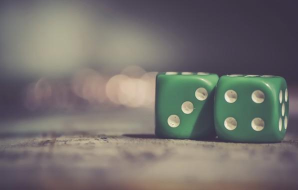 Picture macro, the game, bones