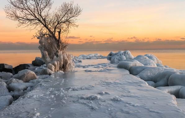 Picture winter, sea, sunset, shore, ice