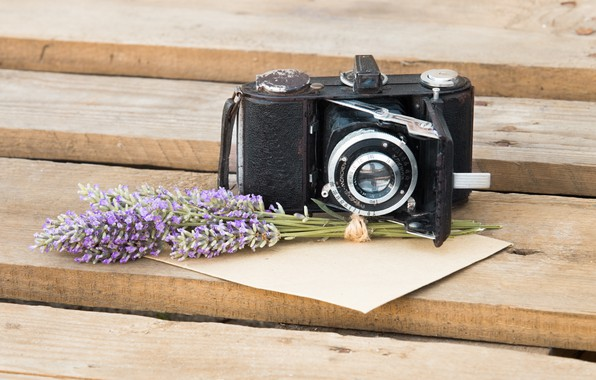 Picture flowers, the camera, lavender, the envelope