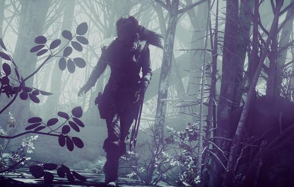 Picture Tomb Raider, girl, game, woman, Lara Croft, vegetation, Lara Croft Rise Of The Tomb Raider