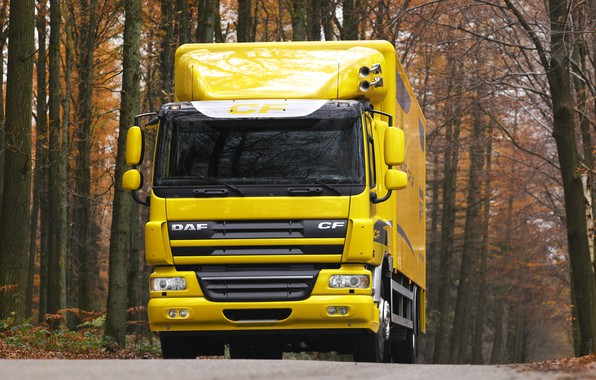 Picture road, autumn, trees, yellow, van, DAF, DAF, platform, 4x2, DAF CF