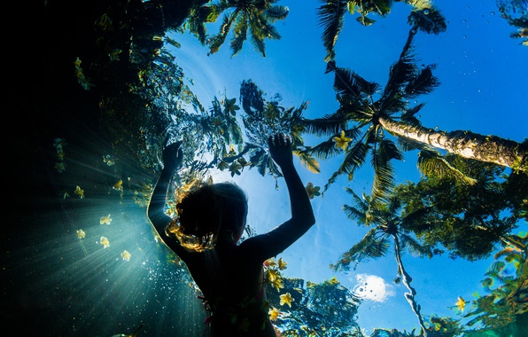 Picture sea, summer, the sky, water, girl, light, flowers, palm trees, the ocean