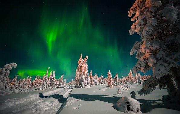 Picture winter, road, forest, the sky, snow, trees, night, stars, Northern lights, the snow