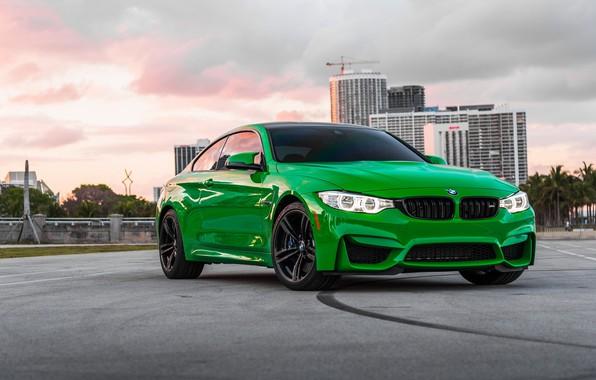 Picture BMW, Light, Green, Frog, Sight, LED, F83