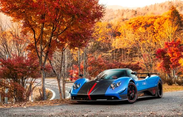 Picture road, autumn, Roadster, Roadster, Pagani, Zonda, Road, Cinque, probe, Pagani