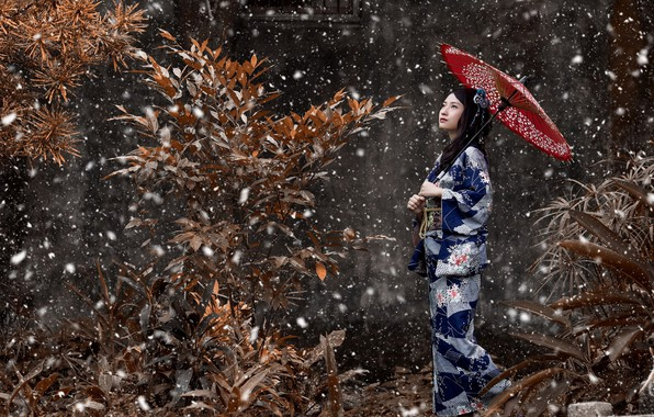 Picture girl, branches, umbrella, Snow, kimono, peer