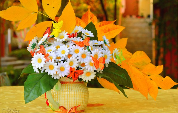 Picture Leaves, Flowers, Flowers