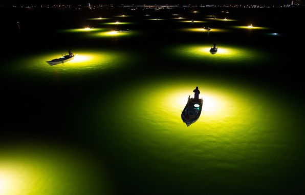 Picture water, light, night, the city, lights, fishermen