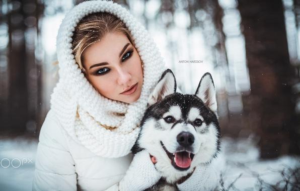 Picture winter, look, face, girl, snow, portrait, dog, friends, husky, Husky, Anastasia, Nastya, Anton Harisov, Anton …