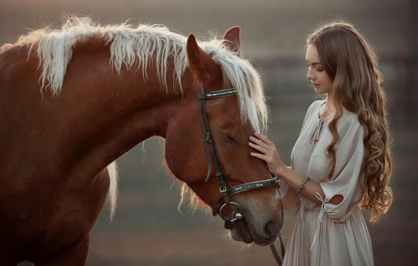 Picture girl, horse, happy, stroking