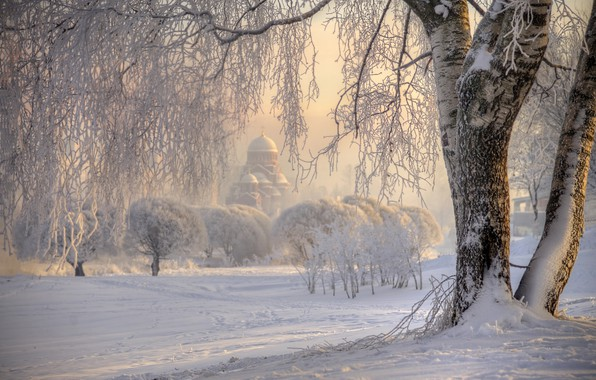 Picture winter, frost, snow, nature, tree, Church, Russia