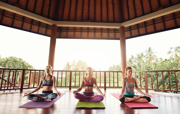 Picture palm trees, girls, meditation, yoga, three, harmony, sports, terrace, the Lotus position, mats
