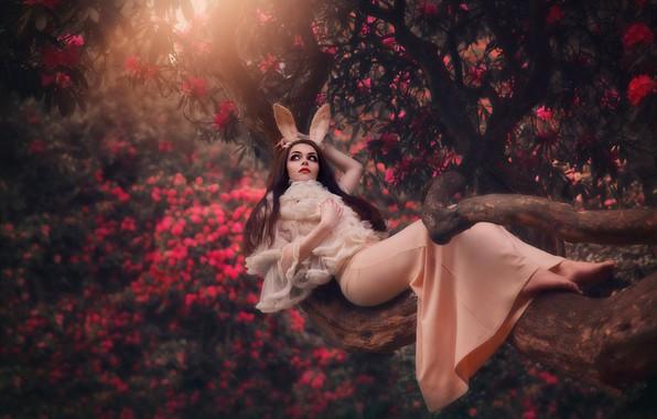 Picture forest, girl, flowers, pose, mood, dress, ears, bokeh, Dagmara Ordakowska