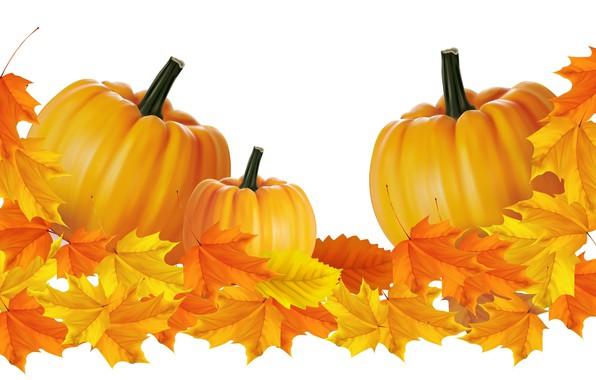 Picture autumn, leaves, pumpkin, vector graphics