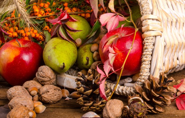 Picture fruit, nuts, basket, bumps, Rowan, the gifts of autumn